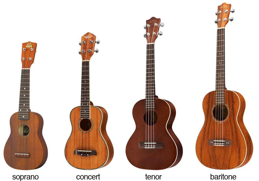 The Four Different Ukulele Sizes or Types