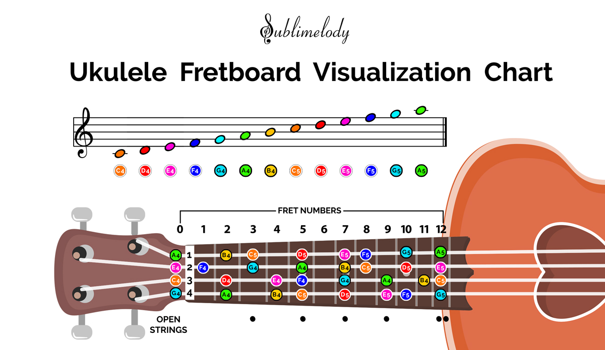 Notes of Music Staff and Ukulele Fretboard